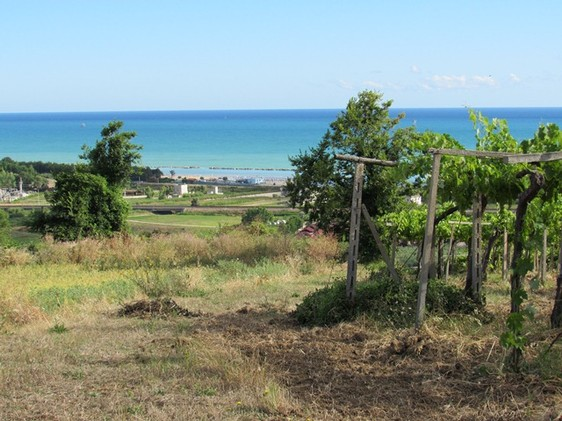 500000 sqm of flat land 2km to the beach, sea and mountain view 1