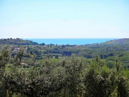 Building land of 5500sqm with sea view and olive grove, 5km to beach