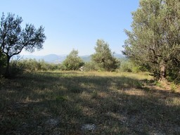 Panoramic spot to build a 100sqm villa with 3000sqm of olive grove, views of the mountains and a distant lake.