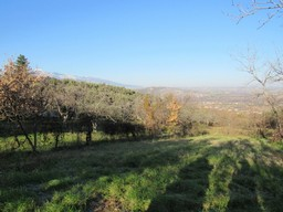 Stone barn to convert, with 1000sqm of land and mountain views for a 150sqm Villa.