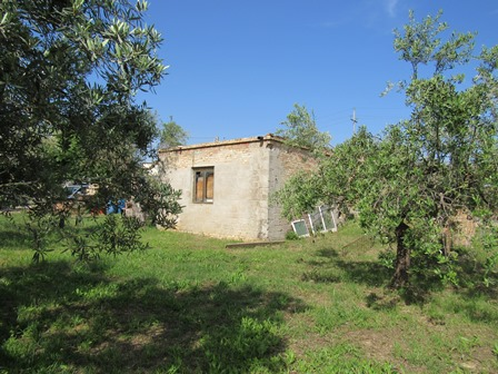 Ruin of 40sqm with 400sqm of land 1km to town and 5km to the beach